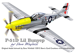 P51D Cripes AMighty model artwork