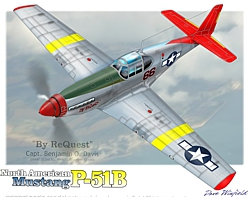 p51c by request artwork